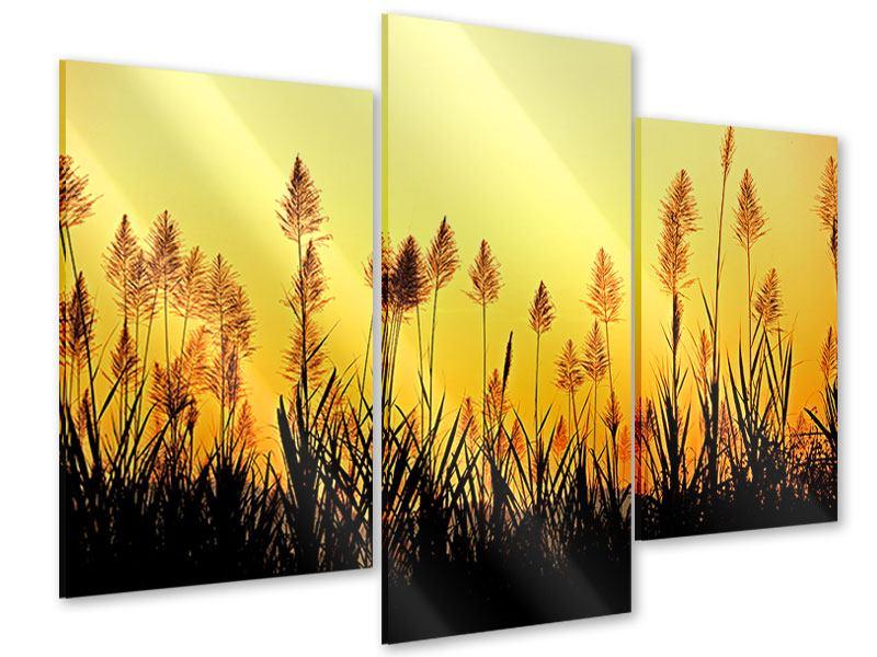 Acrylglasbild 3-teilig modern Die Blumen des Feldes