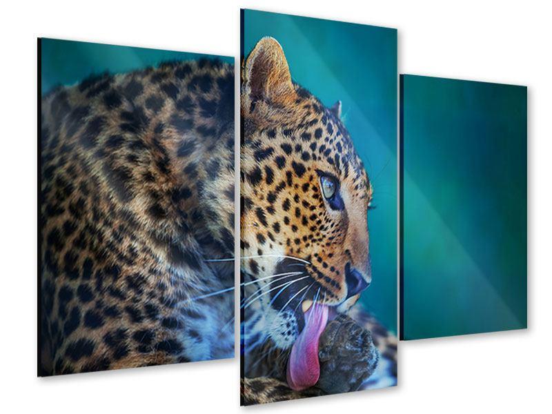 Acrylglasbild 3-teilig modern Leopard XL