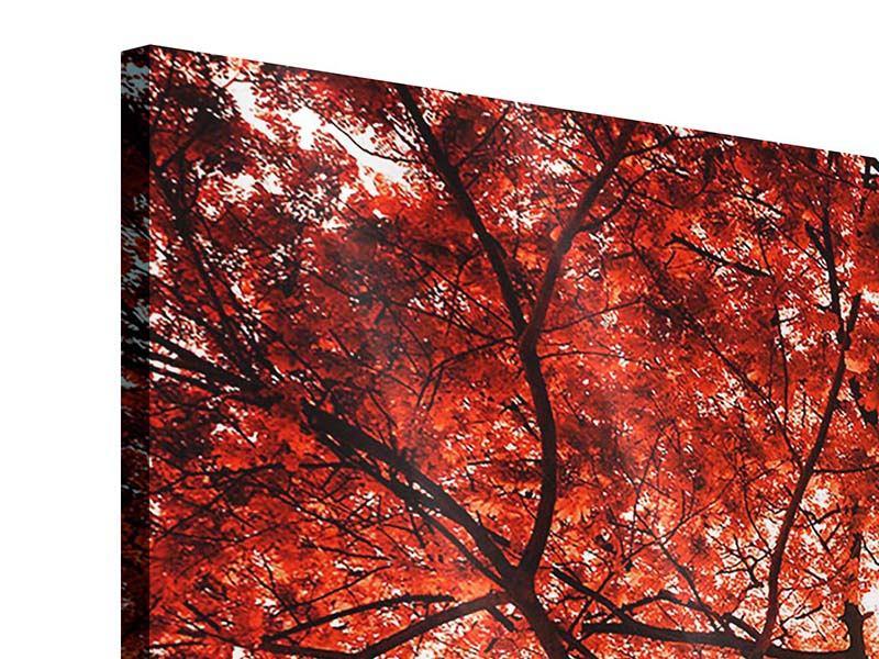 Acrylglasbild 3-teilig modern Herbstlicht