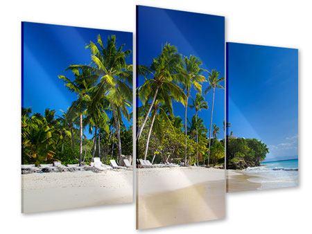 Acrylglasbild 3-teilig modern Aloha