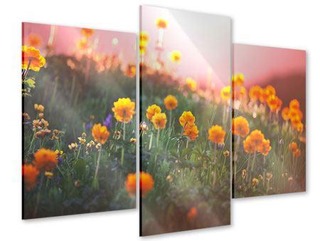 Acrylglasbild 3-teilig modern Die Bergwiese