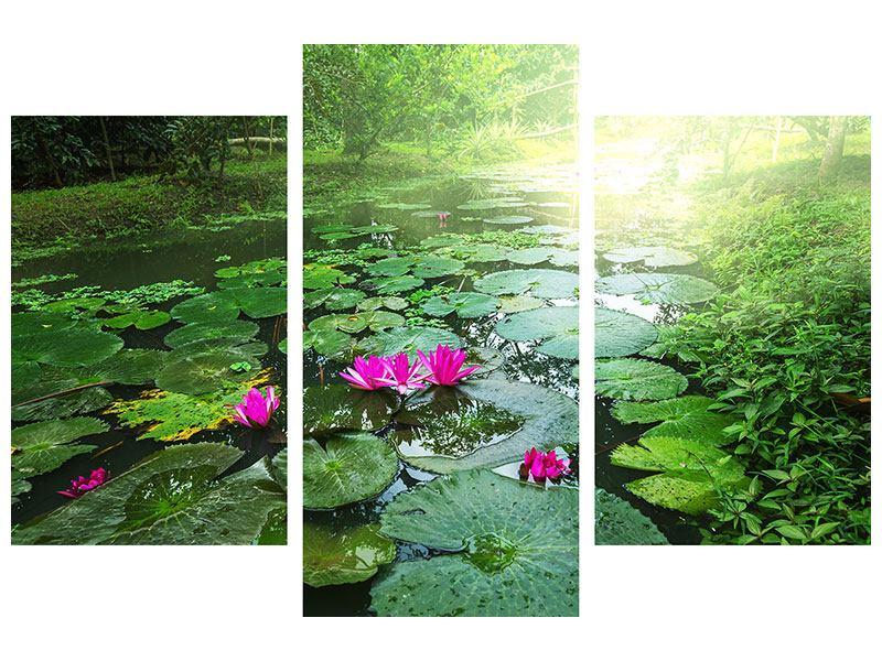 Acrylglasbild 3-teilig modern Gartenteich