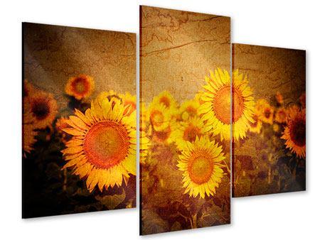 Acrylglasbild 3-teilig modern Retro-Sonnenblumen