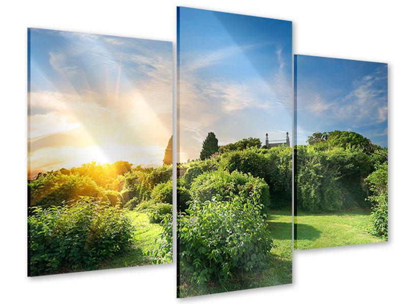 Acrylglasbild 3-teilig modern Sonnenaufgang im Park