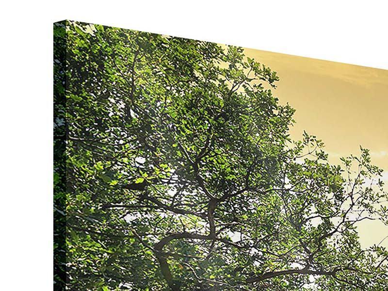 Acrylglasbild 3-teilig modern Am Ende des Waldes