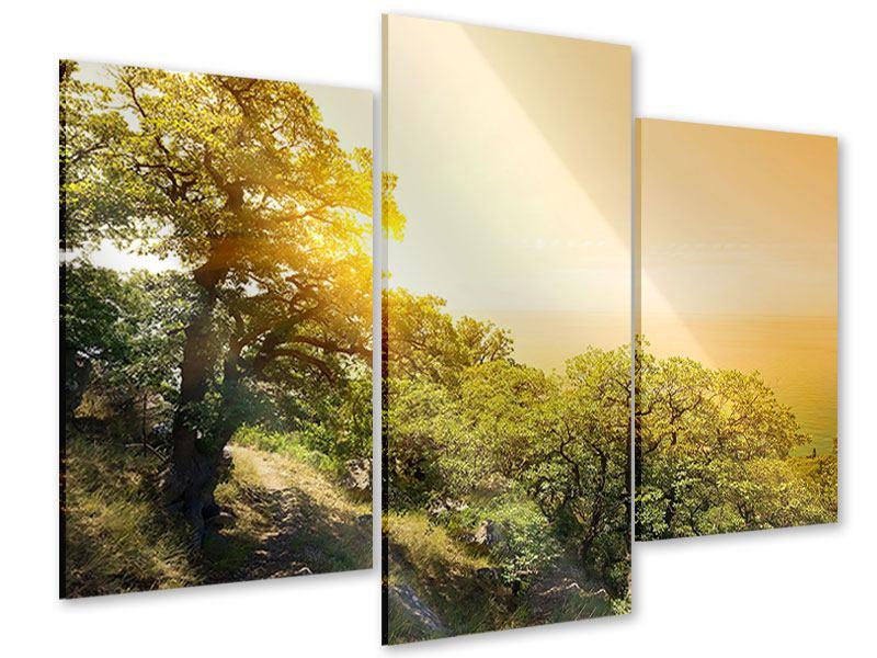 Acrylglasbild 3-teilig modern Sonnenuntergang in der Natur