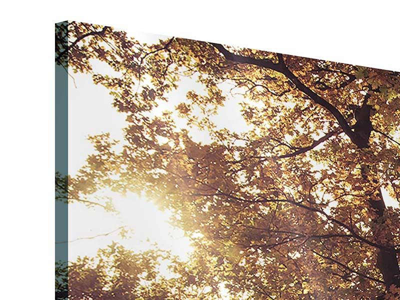 Acrylglasbild 3-teilig modern Landschaftspark