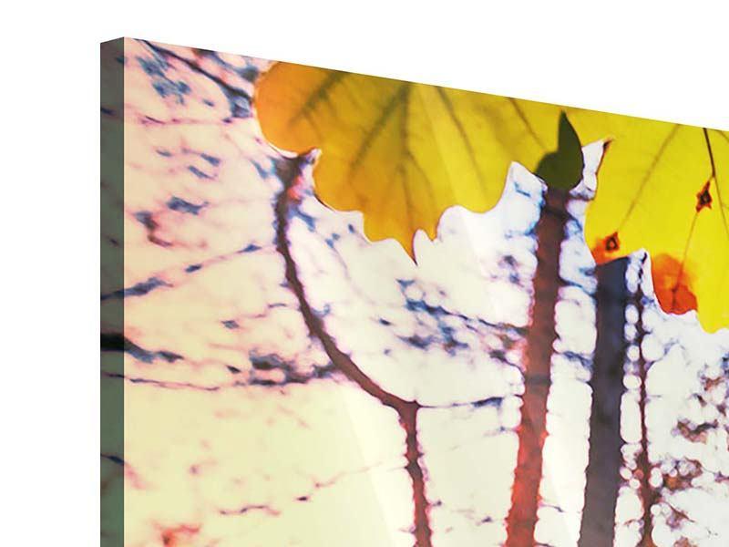 Acrylglasbild 3-teilig modern Herbst