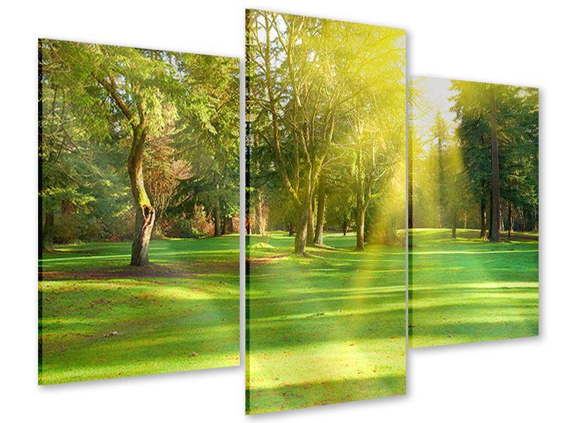 Acrylglasbild 3-teilig modern Im Park