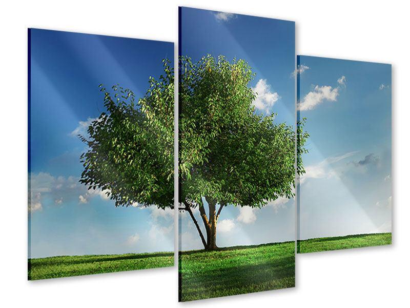 Acrylglasbild 3-teilig modern Baum im Grün