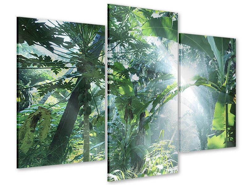 Acrylglasbild 3-teilig modern Dschungelstar