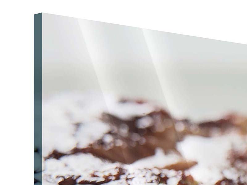 Acrylglasbild 3-teilig modern Perfektes Rindsfilet