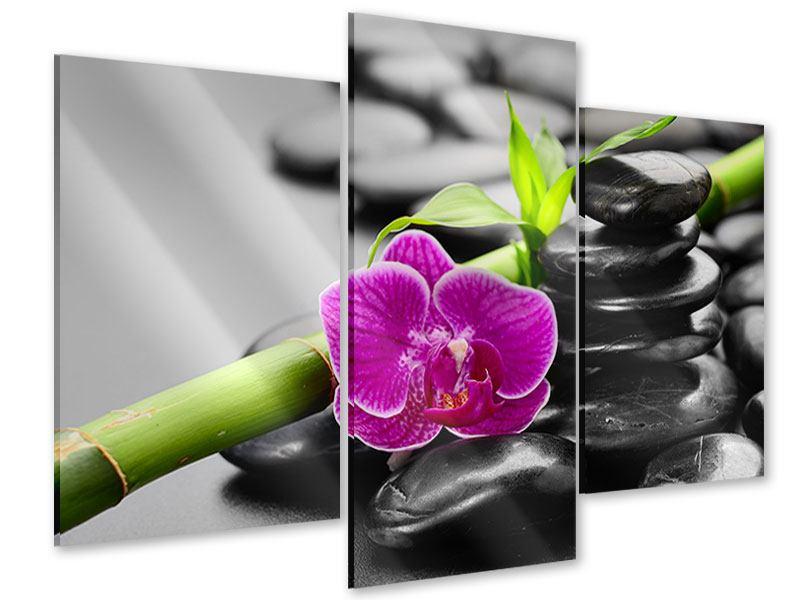 Acrylglasbild 3-teilig modern Feng-Shui-Orchidee