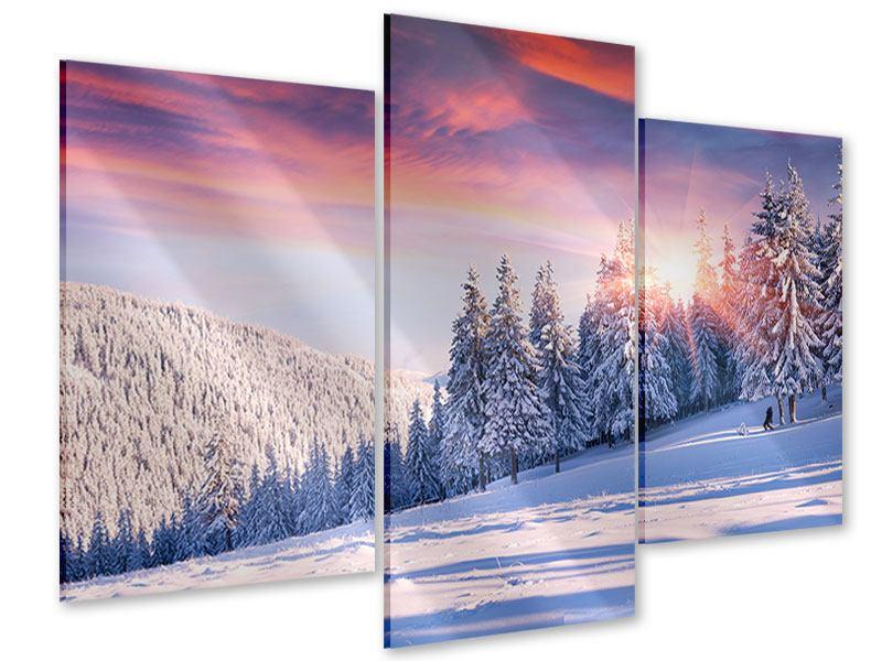 Acrylglasbild 3-teilig modern Winterlandschaft