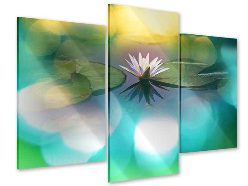 Acrylglasbild 3-teilig modern Lotus-Spiegelung