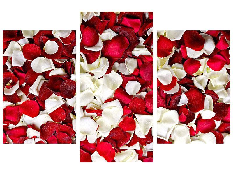 Acrylglasbild 3-teilig modern Rosenblätter