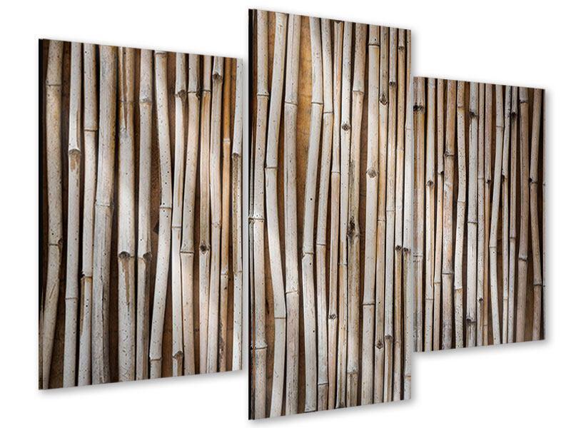 Acrylglasbild 3-teilig modern Getrocknete Bambusrohre