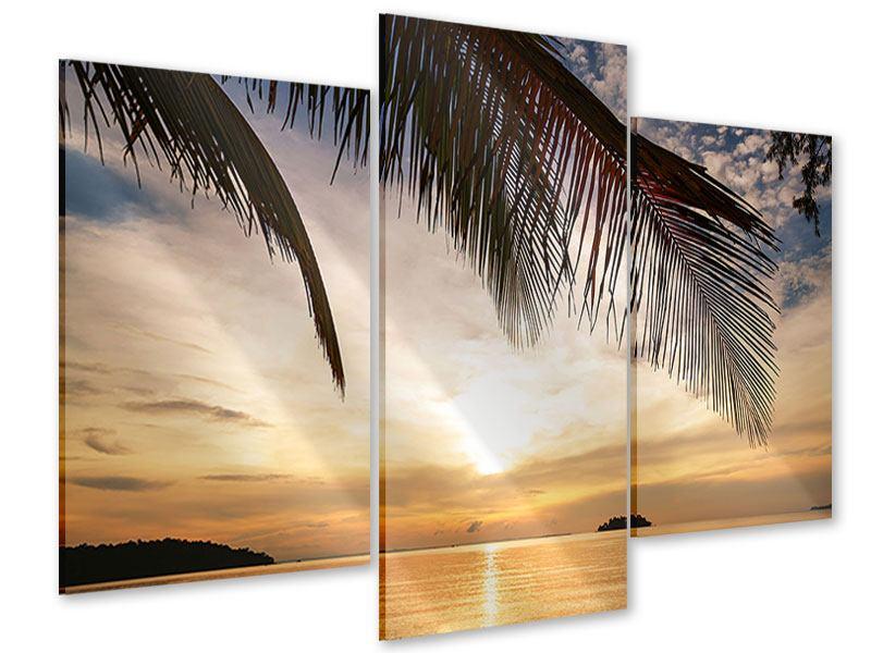 Acrylglasbild 3-teilig modern Strandpalme