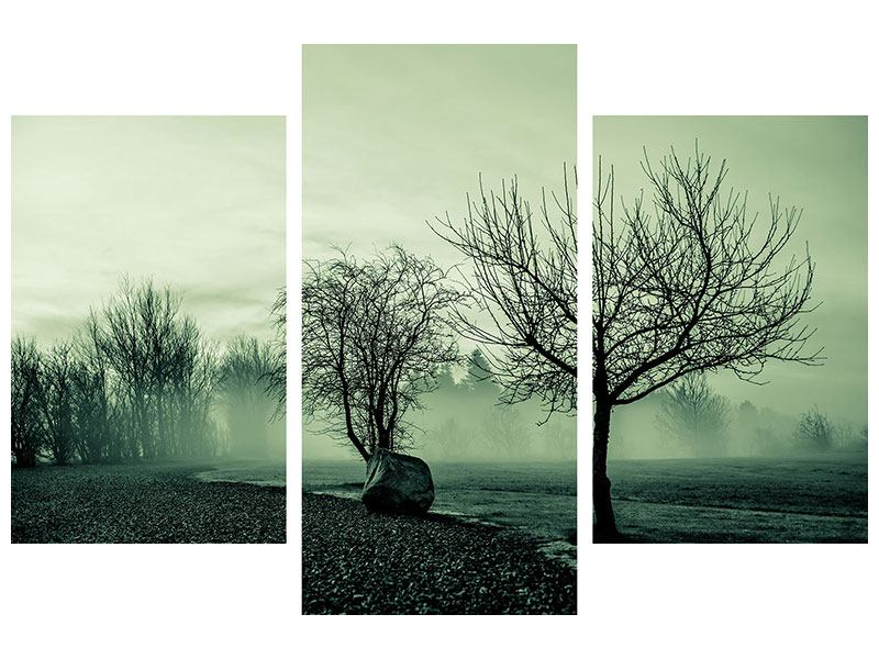 Acrylglasbild 3-teilig modern Der Auwald im Nebel