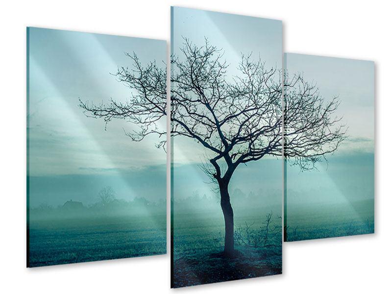 Acrylglasbild 3-teilig modern Der Zauberbaum