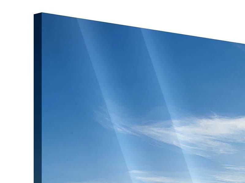 Acrylglasbild 3-teilig modern Der Berg im Schnee