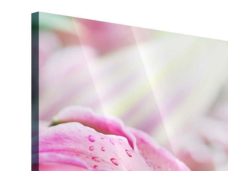 Acrylglasbild 3-teilig modern Lilien im Tau