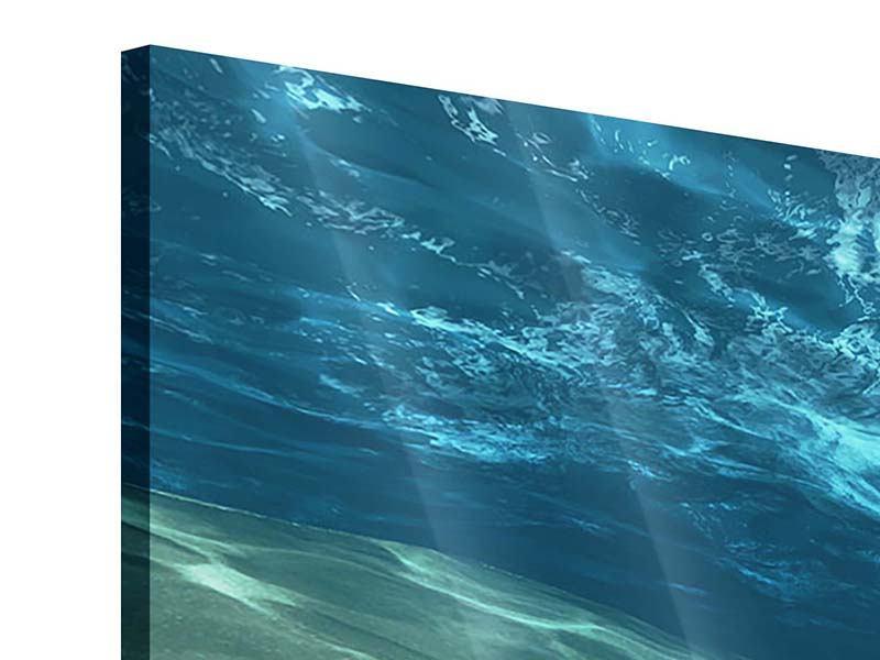 Acrylglasbild 3-teilig modern Unter dem Wasser