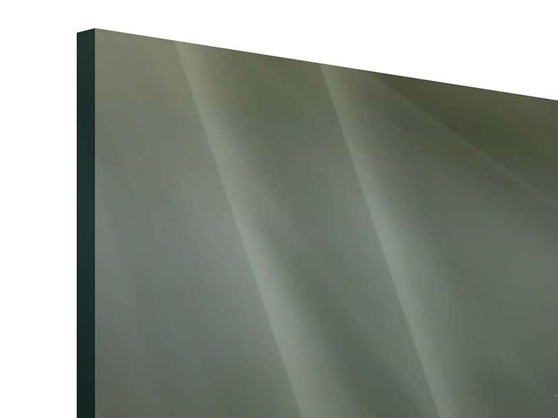 Acrylglasbild 3-teilig modern XXL Seerose in Pink