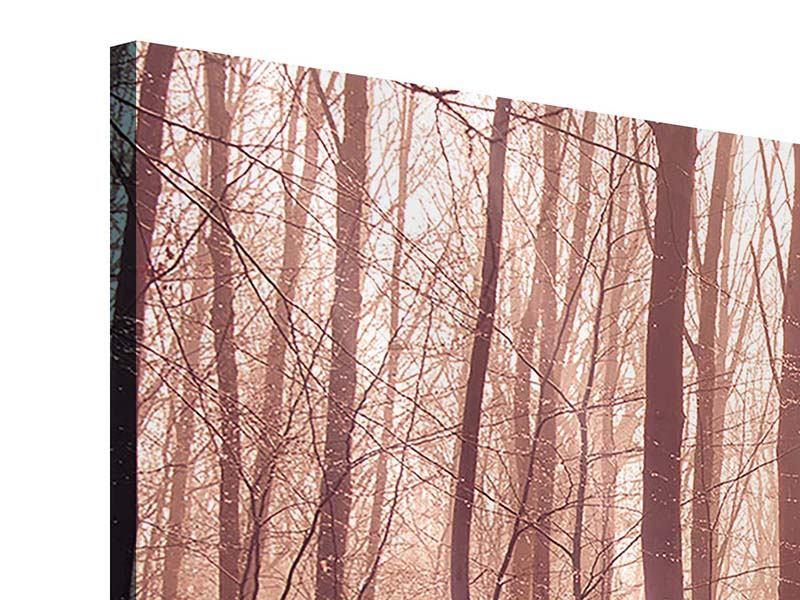 Acrylglasbild 3-teilig modern Sonnenuntergang im Herbstwald