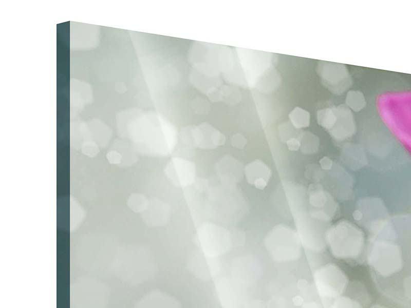Acrylglasbild 3-teilig modern Libelle auf dem Seerosenblatt