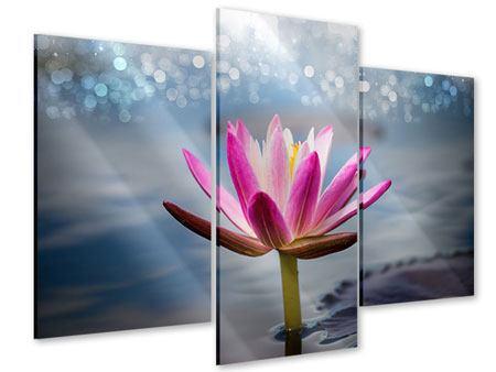Acrylglasbild 3-teilig modern Lotus im Morgentau
