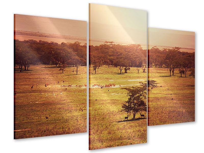Acrylglasbild 3-teilig modern Malerisches Afrika