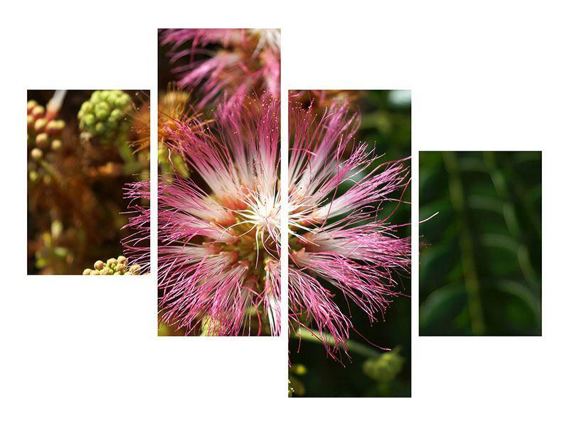 Acrylglasbild 4-teilig modern Die Regenbaumblüte