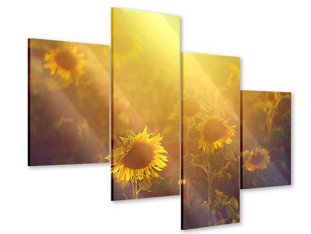 Acrylglasbild 4-teilig modern Sonnenblumen im goldenen Licht