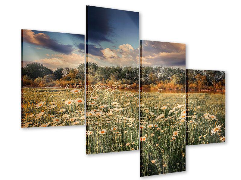 Acrylglasbild 4-teilig modern Die Wiesenmargerite am Fluss