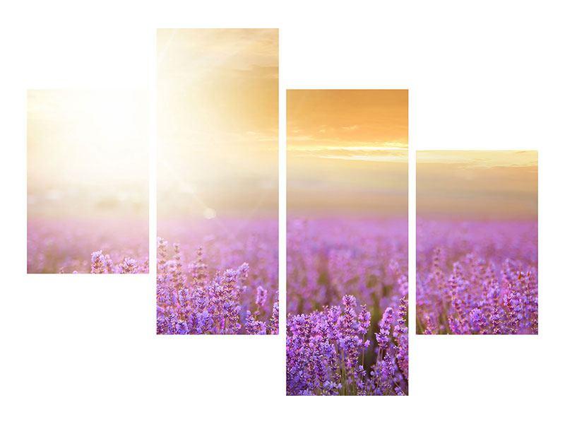 Acrylglasbild 4-teilig modern Sonnenuntergang beim Lavendelfeld