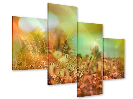 Acrylglasbild 4-teilig modern Blumenwiese in der Abenddämmerung