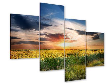 Acrylglasbild 4-teilig modern Ein Feld von Sonnenblumen