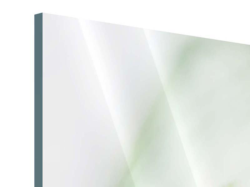 Acrylglasbild 4-teilig modern XXL Pastinak