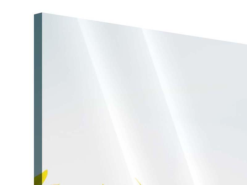 Acrylglasbild 4-teilig modern Im Sonnenblumenfeld