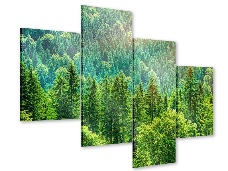 Acrylglasbild 4-teilig modern Der Waldhügel