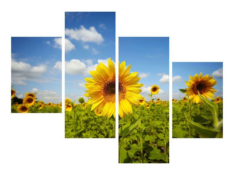 Acrylglasbild 4-teilig modern Sommer-Sonnenblumen