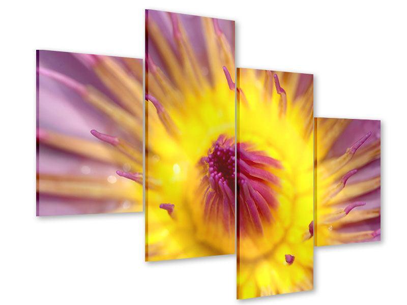 Acrylglasbild 4-teilig modern XXL-Lotus