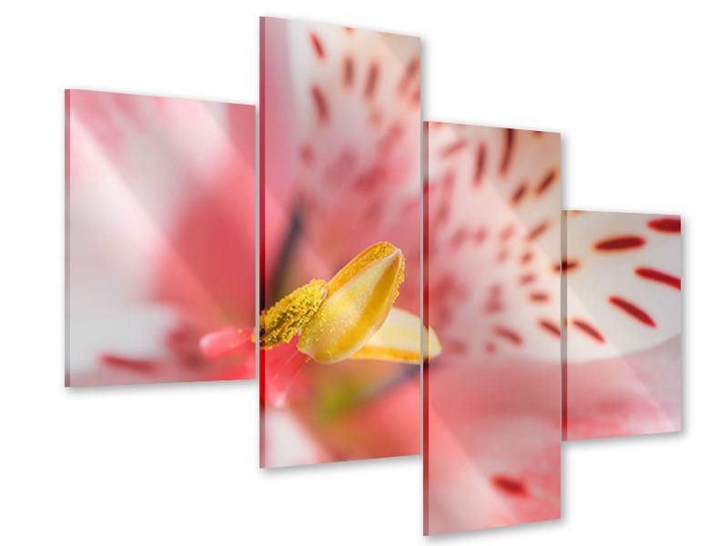 Acrylglasbild 4-teilig modern Der Lilienstempel
