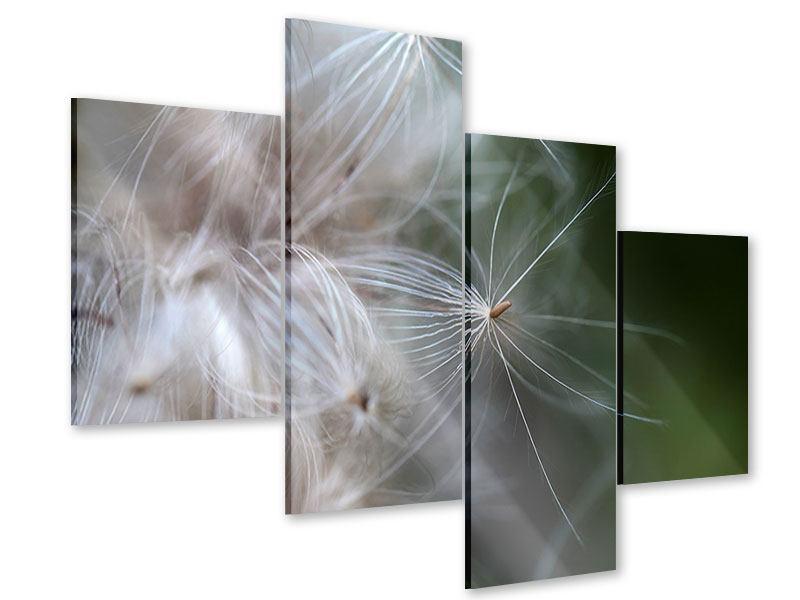Acrylglasbild 4-teilig modern Close up Blütenfasern
