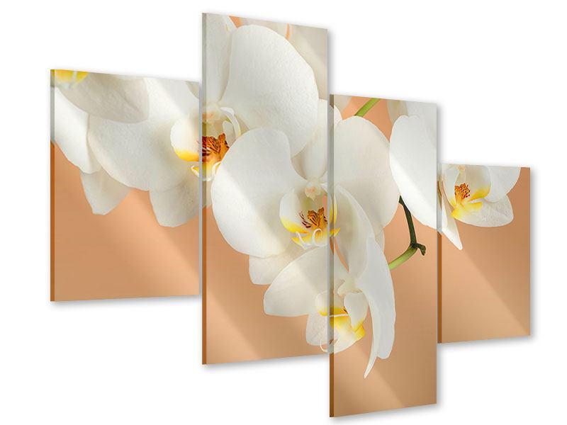 Acrylglasbild 4-teilig modern Weisse Orchideenblüten