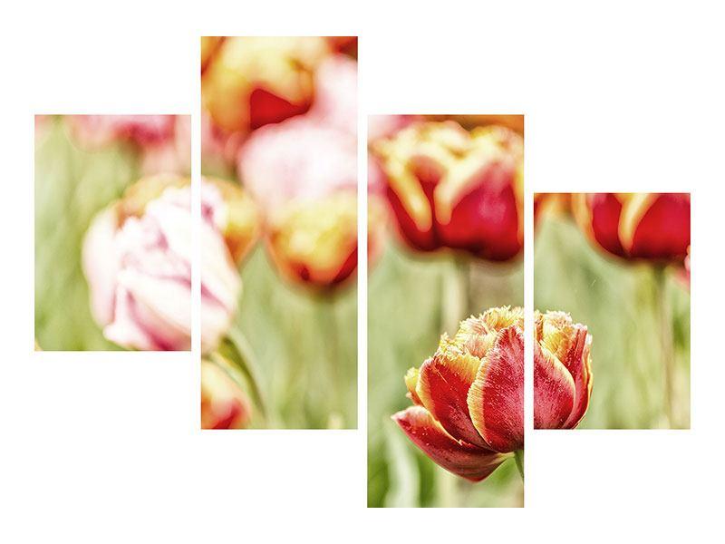 Acrylglasbild 4-teilig modern Die Schönheit der Tulpe