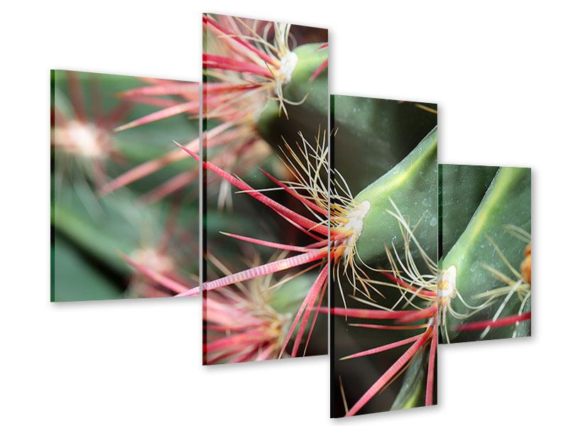 Acrylglasbild 4-teilig modern Die Kaktusblüte