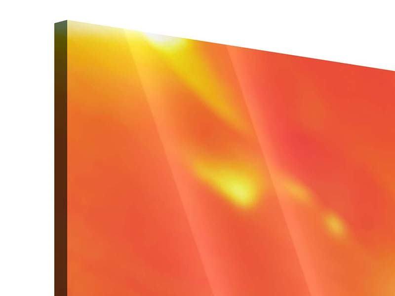 Acrylglasbild 4-teilig modern Die Narbe einer Tulpe XXL