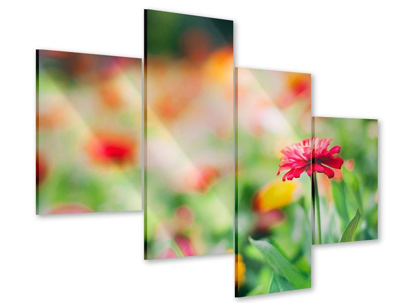 Acrylglasbild 4-teilig modern Im Blumengarten